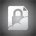 IronBox Passwords